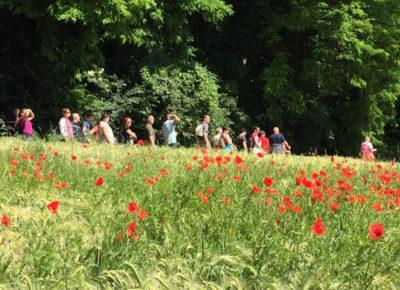 4 juin : balades solidaires aux quatre coins de la région