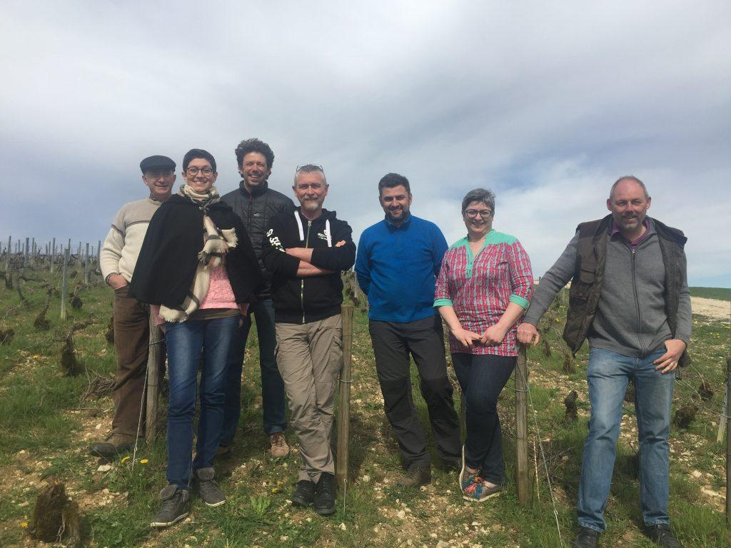 Un GIEE et une Cuma viticole aux Riceys