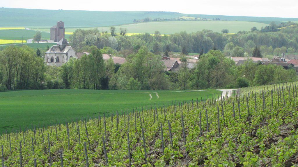 Vanault-le-Châtel : deux coteaux aux raisins prisés