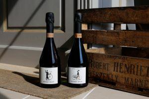 Portrait de Marie Noelle et Nicolas Rainon du Champagne Henriet Bazin couple de vigneron a Villers Marmery dans la Marne
