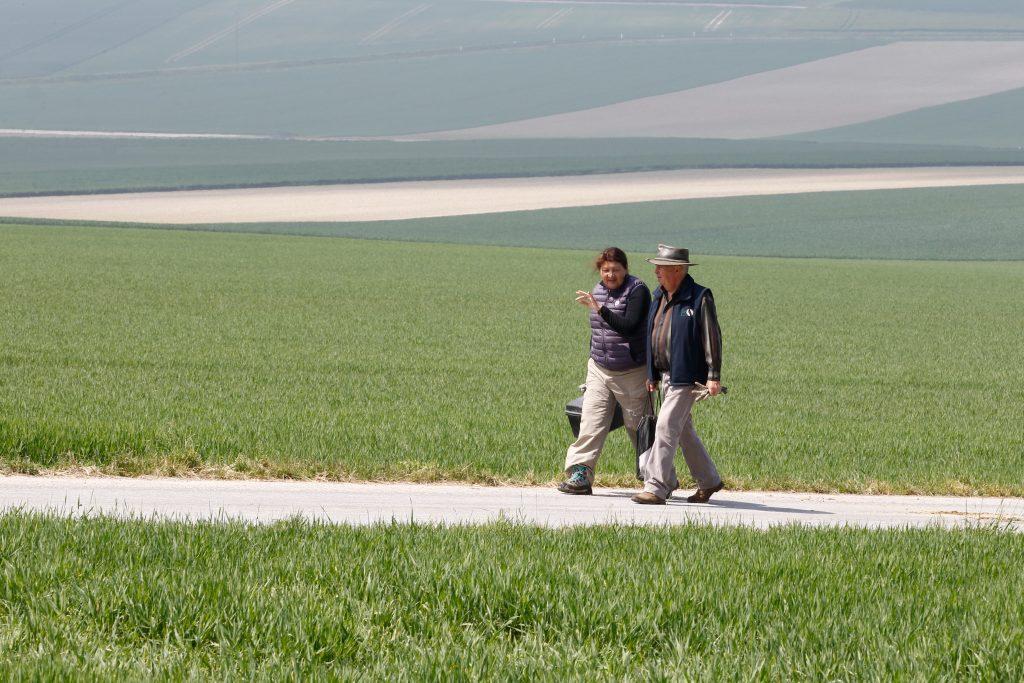 Mieux connaître les sols pour mieux révéler les terroirs
