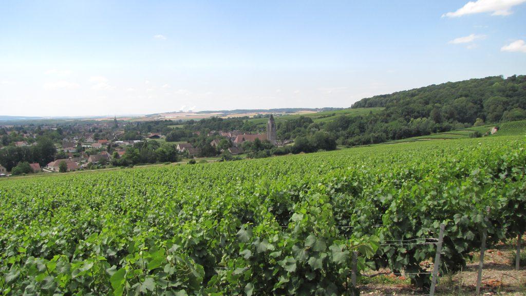 Villenauxe-la-Grande sait tirer profit de la terre