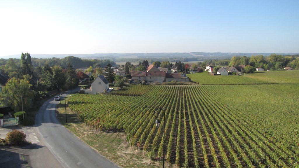 Trigny : petite perle au cœur du Massif de Saint-Thierry