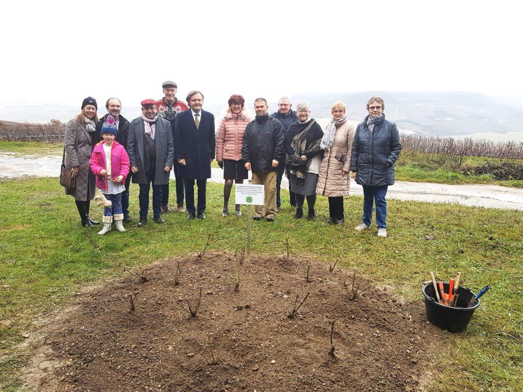 3500 rosiers plantés dans 35 communes