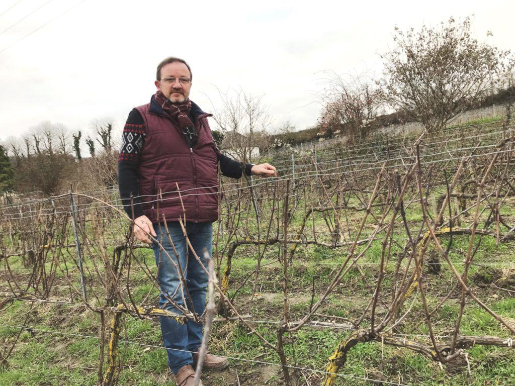 La fédération des Vignerons Indépendants de Champagne efficace locomotive
