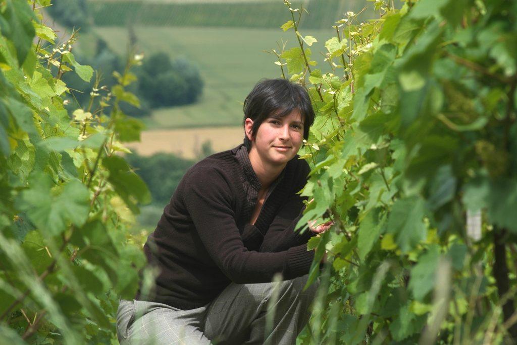 L'utilisation des huiles essentielles dans le traitement des vignes