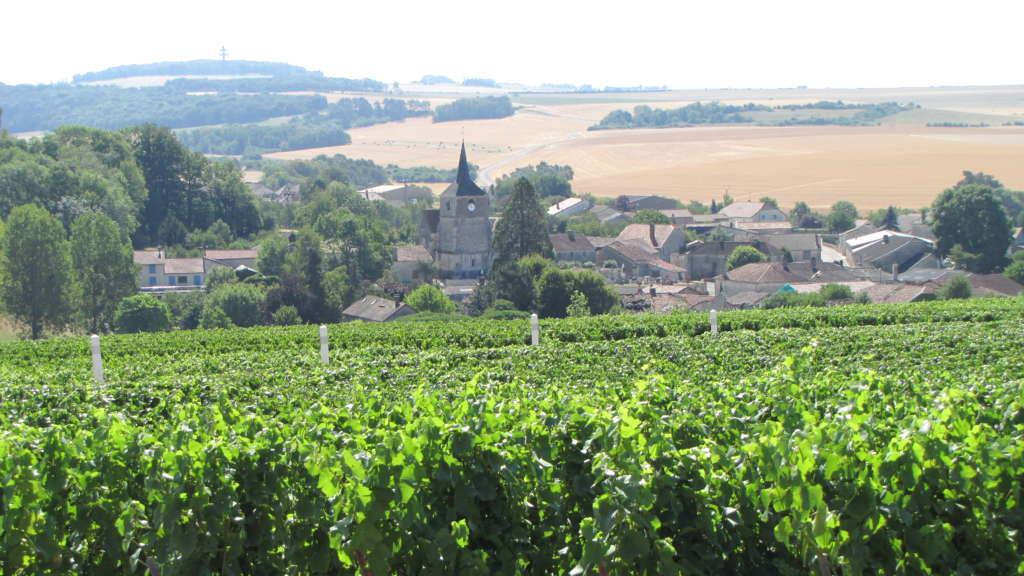 Rouvres-les-Vignes: un charme discret aux frontières de la Haute-Marne