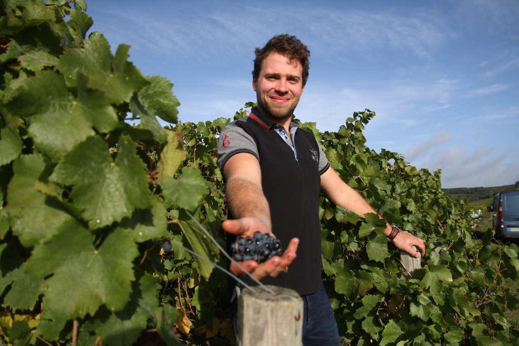 Plus verte la vigne avec Romain Hénin