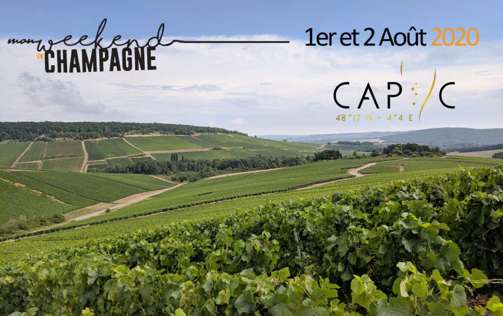 Les vignerons aubois ouvrent leurs caves le week-end des 1er et 2 août