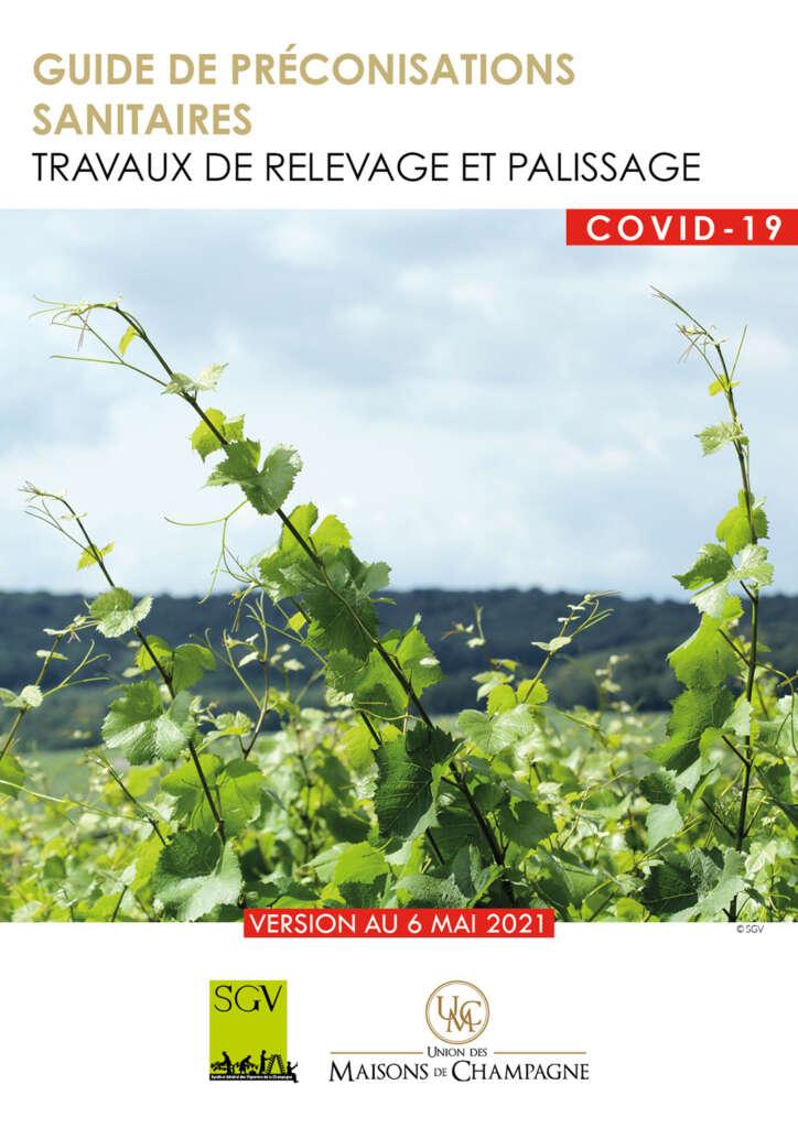 Le guide de préconisations sanitaires pour les travaux de relevage et de palissage en Champagne
