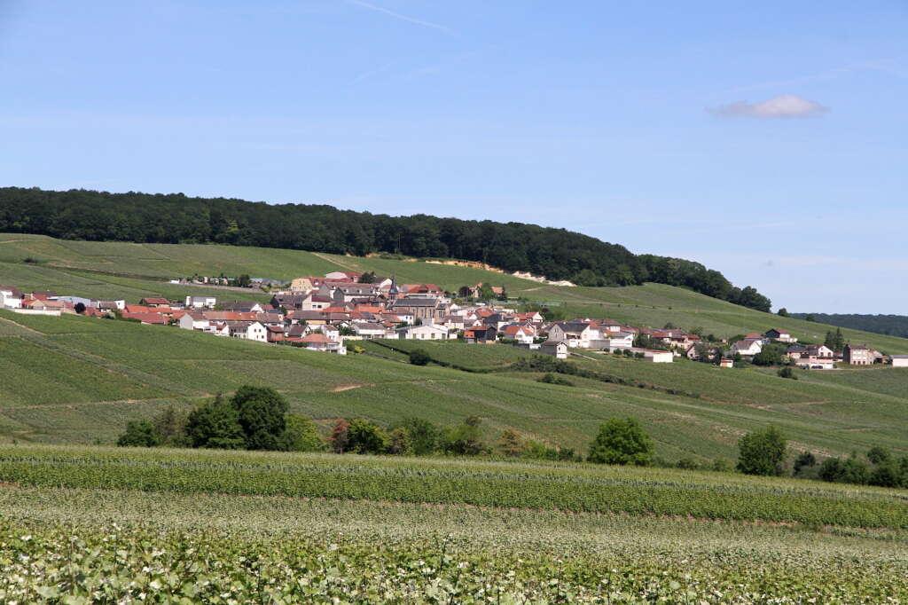Monthelon, le balcon de la Champagne